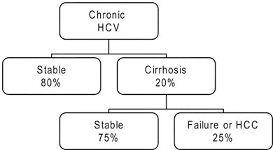 The natural history of patients following chronic HCV. Numbers in parentheses reflect the percentage of the total group of persons with chronic HCV infection