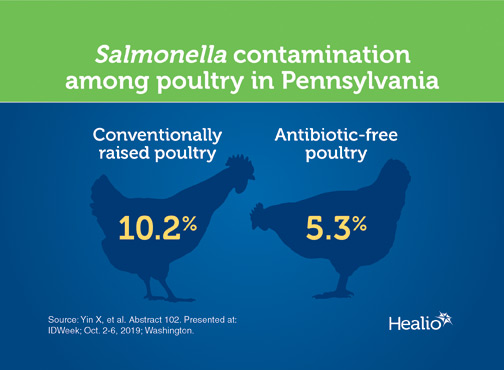 An infographic about Salmonella in poultry