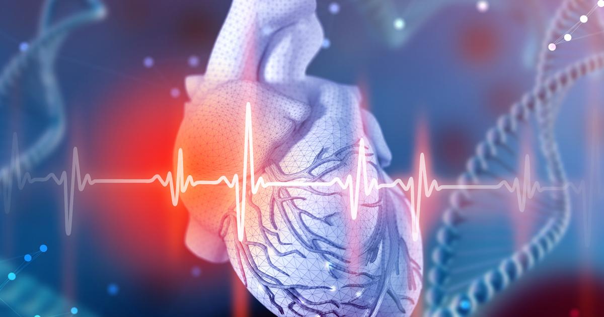 heart 3 adobe 245089631.