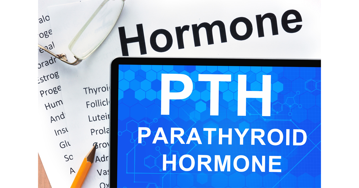 Parathyroid hormone Adobe